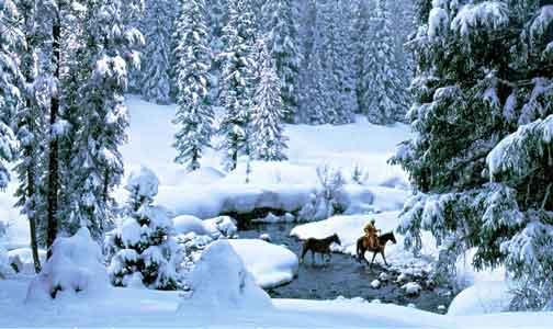 Winter-Creek-Crossing